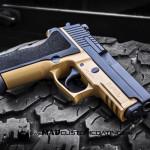 Sig P229 in MAD Black & Mud Brown